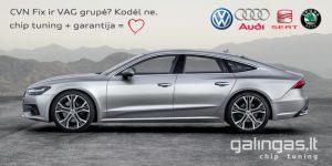 CVN kodas VAG grupei bei BMW serijai paliekamas originalus